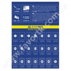 Етикетки самоклейкі 1шт 210х297мм 100арк